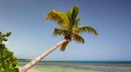 Las Terrenas - Republique Dominicaine